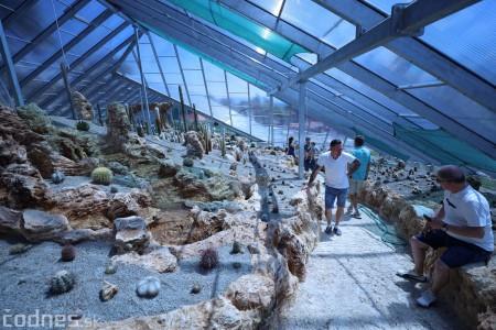Foto a video: V Bojniciach otvorili novú unikátnu atrakciu Botany Park Bojnice (kaktusárium) 44