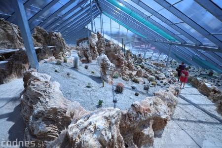Foto a video: V Bojniciach otvorili novú unikátnu atrakciu Botany Park Bojnice (kaktusárium) 45