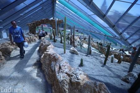 Foto a video: V Bojniciach otvorili novú unikátnu atrakciu Botany Park Bojnice (kaktusárium) 46