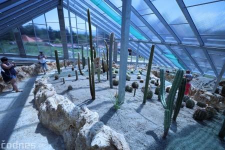 Foto a video: V Bojniciach otvorili novú unikátnu atrakciu Botany Park Bojnice (kaktusárium) 49