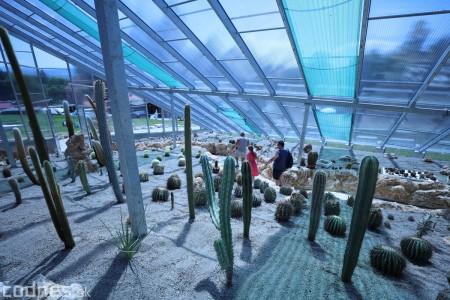 Foto a video: V Bojniciach otvorili novú unikátnu atrakciu Botany Park Bojnice (kaktusárium) 50