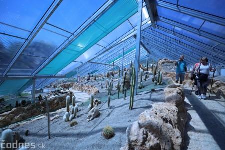 Foto a video: V Bojniciach otvorili novú unikátnu atrakciu Botany Park Bojnice (kaktusárium) 52