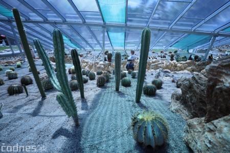 Foto a video: V Bojniciach otvorili novú unikátnu atrakciu Botany Park Bojnice (kaktusárium) 55