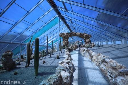 Foto a video: V Bojniciach otvorili novú unikátnu atrakciu Botany Park Bojnice (kaktusárium) 56