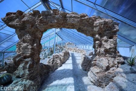 Foto a video: V Bojniciach otvorili novú unikátnu atrakciu Botany Park Bojnice (kaktusárium) 57