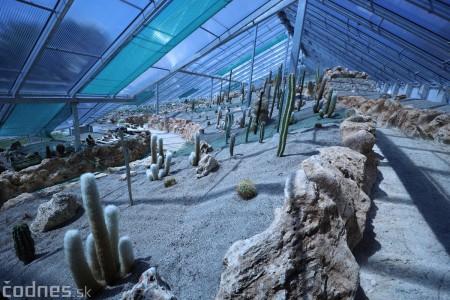 Foto a video: V Bojniciach otvorili novú unikátnu atrakciu Botany Park Bojnice (kaktusárium) 58