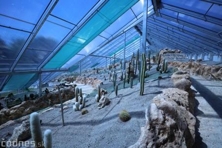Foto a video: V Bojniciach otvorili novú unikátnu atrakciu Botany Park Bojnice (kaktusárium) 60