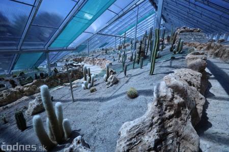 Foto a video: V Bojniciach otvorili novú unikátnu atrakciu Botany Park Bojnice (kaktusárium) 63