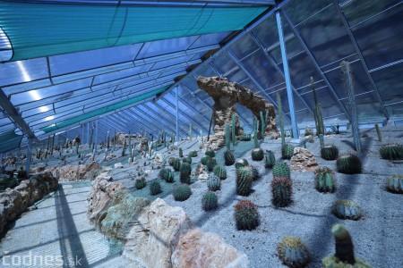 Foto a video: V Bojniciach otvorili novú unikátnu atrakciu Botany Park Bojnice (kaktusárium) 66