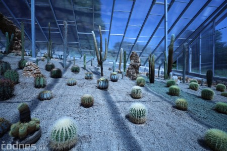 Foto a video: V Bojniciach otvorili novú unikátnu atrakciu Botany Park Bojnice (kaktusárium) 67