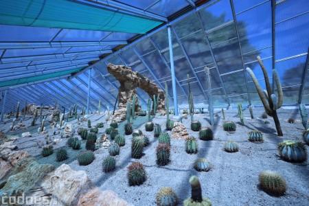 Foto a video: V Bojniciach otvorili novú unikátnu atrakciu Botany Park Bojnice (kaktusárium) 68