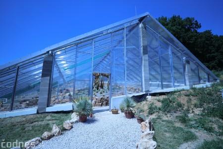 Foto a video: V Bojniciach otvorili novú unikátnu atrakciu Botany Park Bojnice (kaktusárium) 71