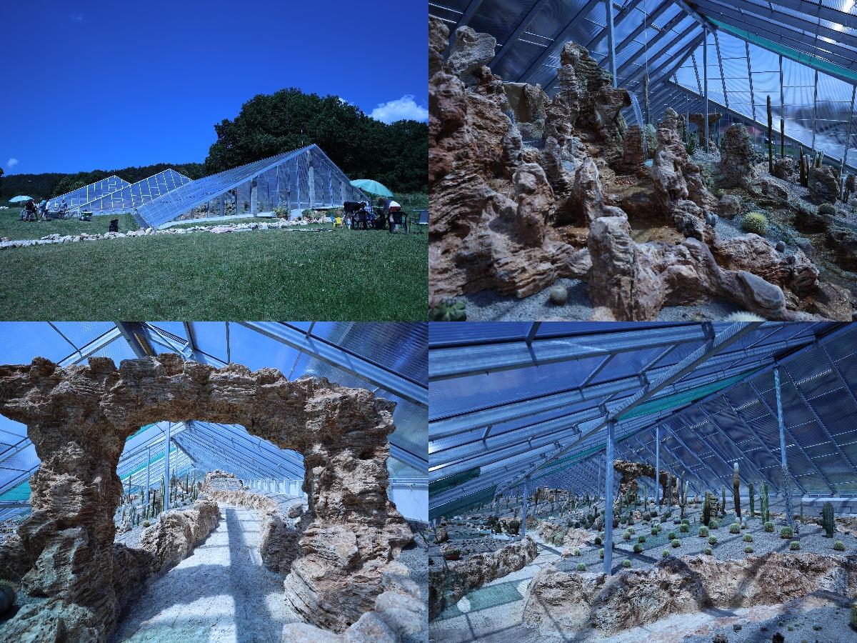 Foto a video: V Bojniciach otvorili novú unikátnu atrakciu Botany Park Bojnice (kaktusárium)