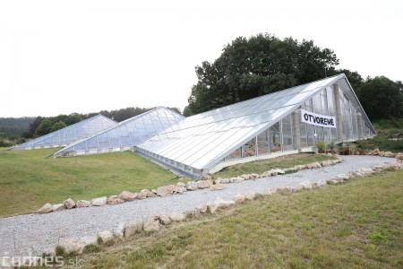 Foto a video: V Bojniciach otvorili novú unikátnu atrakciu Botany Park Bojnice (kaktusárium) 40