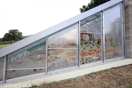Foto a video: V Bojniciach otvorili novú unikátnu atrakciu Botany Park Bojnice (kaktusárium) 54