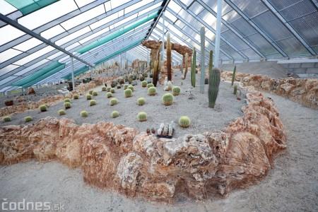 Foto a video: V Bojniciach otvorili novú unikátnu atrakciu Botany Park Bojnice (kaktusárium) 72
