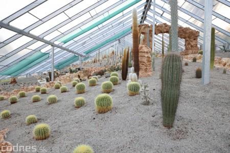 Foto a video: V Bojniciach otvorili novú unikátnu atrakciu Botany Park Bojnice (kaktusárium) 59