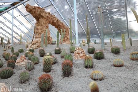 Foto a video: V Bojniciach otvorili novú unikátnu atrakciu Botany Park Bojnice (kaktusárium) 48
