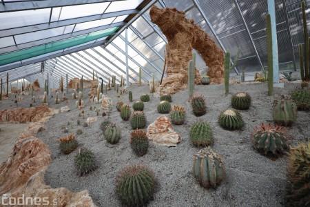 Foto a video: V Bojniciach otvorili novú unikátnu atrakciu Botany Park Bojnice (kaktusárium) 77