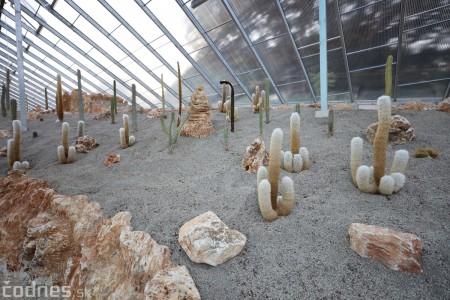 Foto a video: V Bojniciach otvorili novú unikátnu atrakciu Botany Park Bojnice (kaktusárium) 80