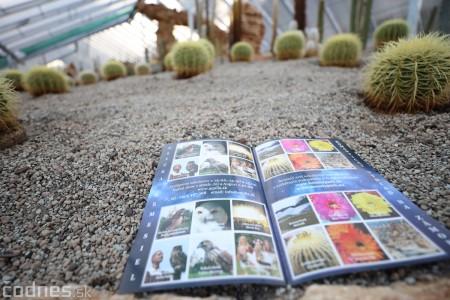 Foto a video: V Bojniciach otvorili novú unikátnu atrakciu Botany Park Bojnice (kaktusárium) 83