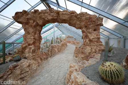 Foto a video: V Bojniciach otvorili novú unikátnu atrakciu Botany Park Bojnice (kaktusárium) 84