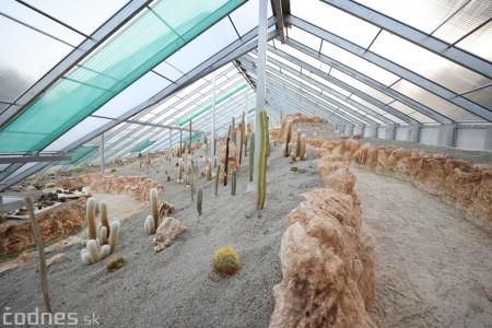 Foto a video: V Bojniciach otvorili novú unikátnu atrakciu Botany Park Bojnice (kaktusárium) 86