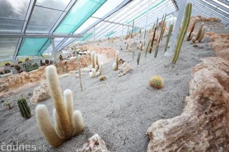 Foto a video: V Bojniciach otvorili novú unikátnu atrakciu Botany Park Bojnice (kaktusárium) 87