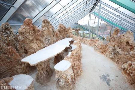 Foto a video: V Bojniciach otvorili novú unikátnu atrakciu Botany Park Bojnice (kaktusárium) 90