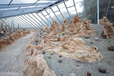Foto a video: V Bojniciach otvorili novú unikátnu atrakciu Botany Park Bojnice (kaktusárium) 92