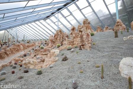 Foto a video: V Bojniciach otvorili novú unikátnu atrakciu Botany Park Bojnice (kaktusárium) 95