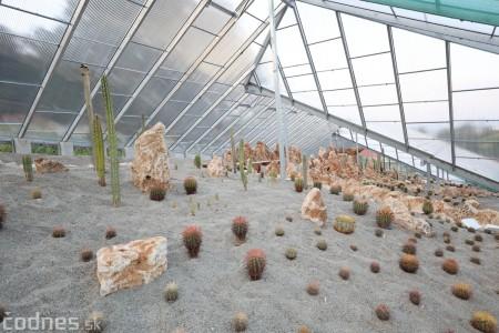 Foto a video: V Bojniciach otvorili novú unikátnu atrakciu Botany Park Bojnice (kaktusárium) 98