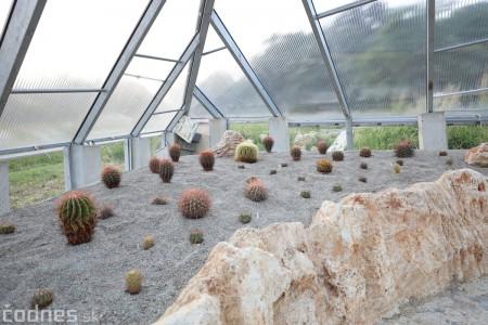 Foto a video: V Bojniciach otvorili novú unikátnu atrakciu Botany Park Bojnice (kaktusárium) 100