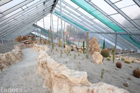 Foto a video: V Bojniciach otvorili novú unikátnu atrakciu Botany Park Bojnice (kaktusárium) 101