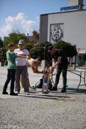 Foto a video: STREET PD 2021 (Stre3t PD) - Multižánrový festival na námestí v Prievidzi 302