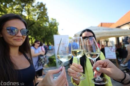 Foto a video: Bojnický festival poctivých vín 2021 19