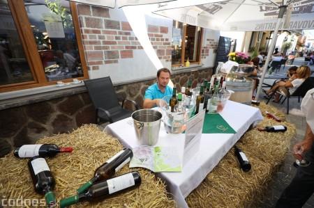 Foto a video: Bojnický festival poctivých vín 2021 20