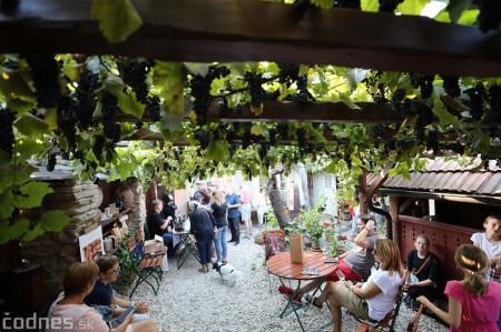 Foto a video: Bojnický festival poctivých vín 2021 59