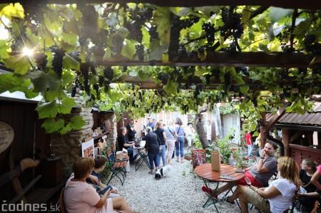 Foto a video: Bojnický festival poctivých vín 2021 60